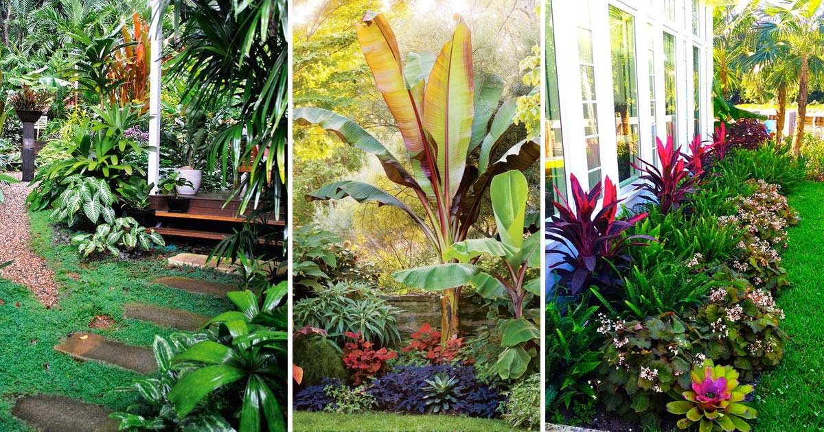 top tropical backyard garden ideas