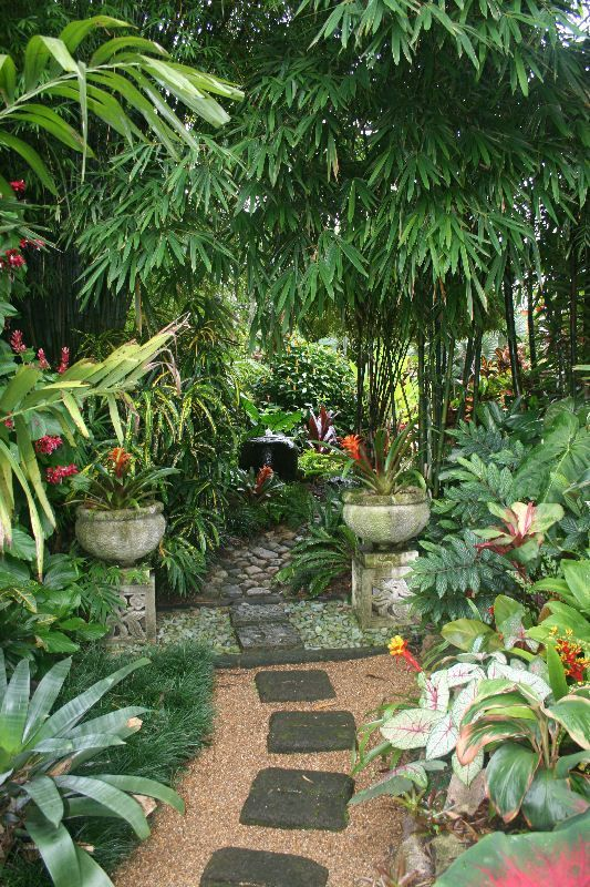 Top Tropical Backyard Garden Ideas - Stylendesigns on Tropical Patio Ideas id=42618